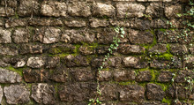 Texture Of Old Stone Brick Wall Covered With Green Moss