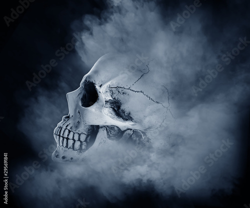 Valokuva  Human skull on white background