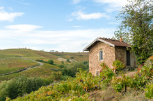 The Little House In Famous Vineyard Of Fleurie In Beaujolais