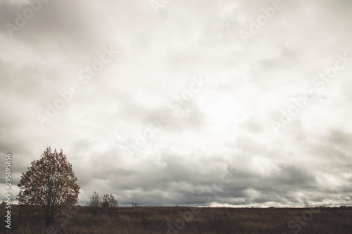 Foto  Autumn cloudy weather. Field. A lot of clouds. yellow colors