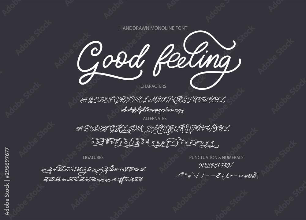 Fototapeta Hand drawn calligraphic vector monoline font. Distress signature letters. Modern script calligraphy type. ABC typography latin signature alphabet.