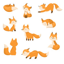A Set Of Cute Cartoon Foxes In...