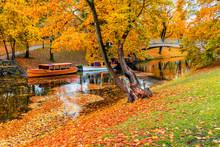 Autumn In Central Public Park ...
