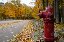 Red Fire Hydrant Stands Alone Among The Beauty Of The Fall Autumn Season Colors