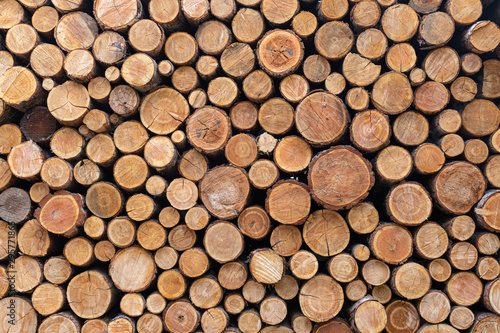Poster Firewood texture Stacked Wood Logs Pattern Background