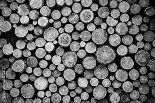Photo sur Aluminium Texture de bois de chauffage Stacked Wood Logs Pattern Background Black & White