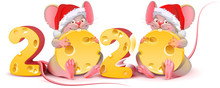 2020 Year Of Mouse Calendar. T...