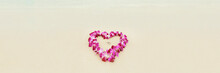 Beach Wedding Proposal Rings I...