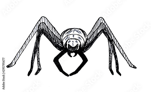Photo Halloween spider isolated on white background