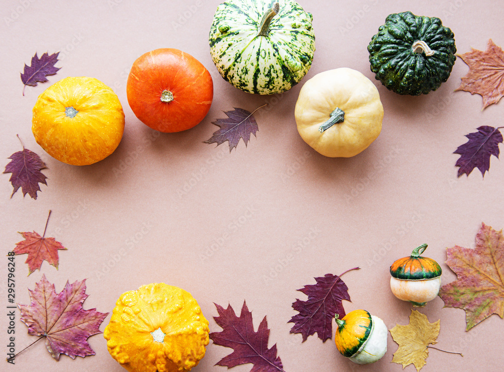Fototapety, obrazy: Pumpkins on a light brown background