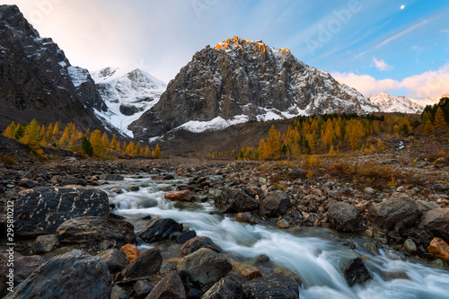 Photo Amazing autumn Altai nature landscape of Aktru valley, mountain ice peaks of Siberia, fast mountain river with big stones, trees grow on shore and blue sky at sunrise on background