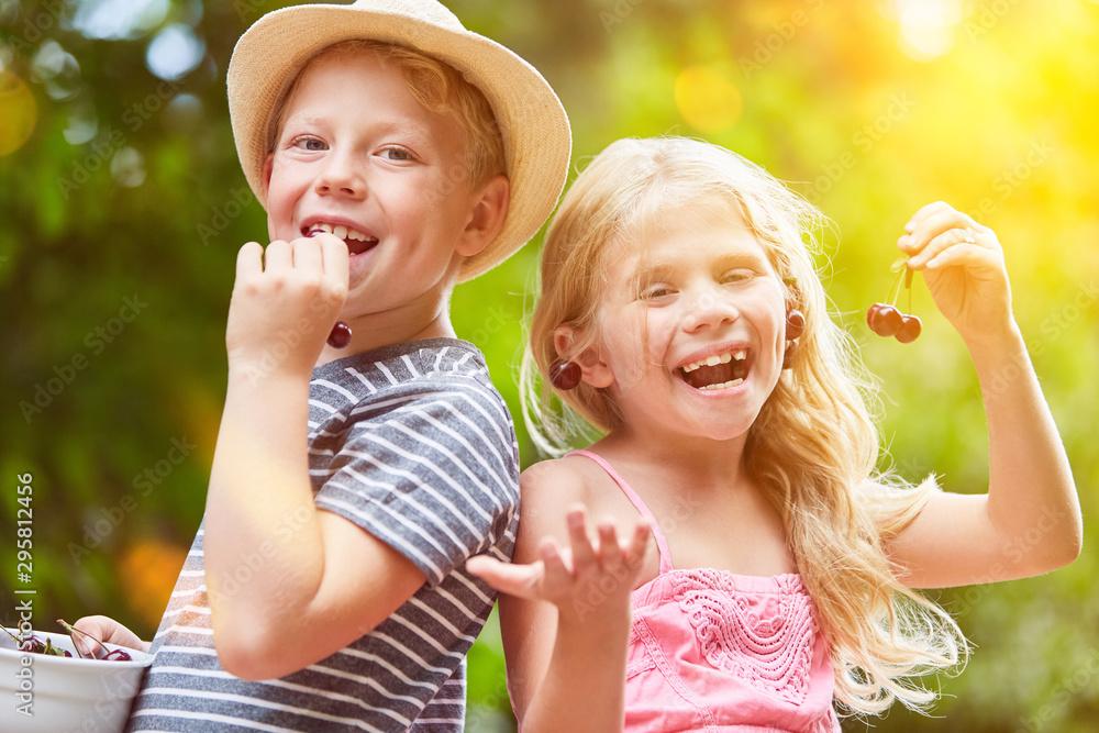Fototapety, obrazy: Two siblings eat cherries in summer
