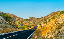Road Through The Tehuacan-Cuic...