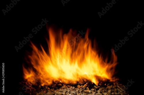 Fotografía  burning wood pellets, living flame