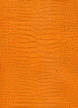 Close Up Orange Crocodile Skin Texture Background.