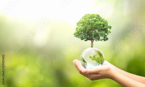 Fotografering  hand holding glass globe ball with tree growing and green nature blur background