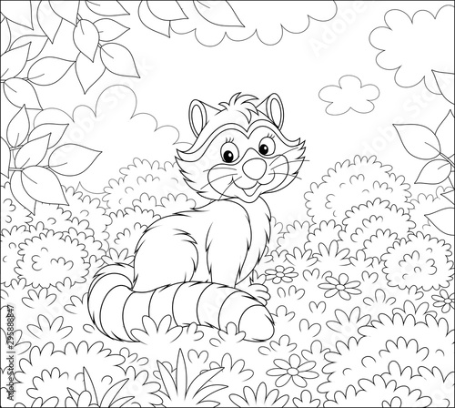 Slika na platnu Cute raccoon sitting on grass among bushes and branches of trees on a forest edg