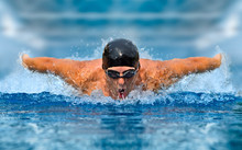 Man In Swimming Pool. Butterfly Style
