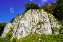 Steep White Cliffs With Trees, Hilly Forest Area In Autumn. Yellow Leaves On Trees On A Sunny Warm Day.