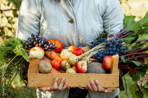 Farmer girl holds in her hands a wooden box with a crop of vegetables and fruits, organic vegetables. The concept of a garden, cottage, harvest.