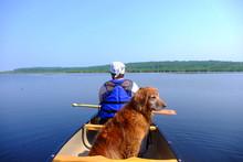 Canoe With A Canine