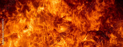 Photo sur Toile Feu, Flamme Close up hot fire flame burning glowing on black dark background