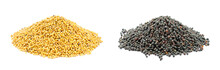 Yellow And Black Piles Of Mustard And Rapeseed Grains Isolated On A White Background. Close-up, Front View. Mustard And Rapeseed Grains Isolated On White Background.