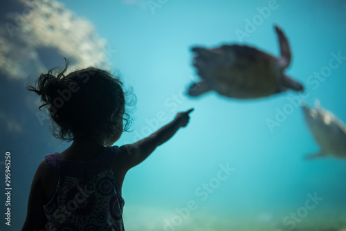Poster Tortue The girl and the turtle