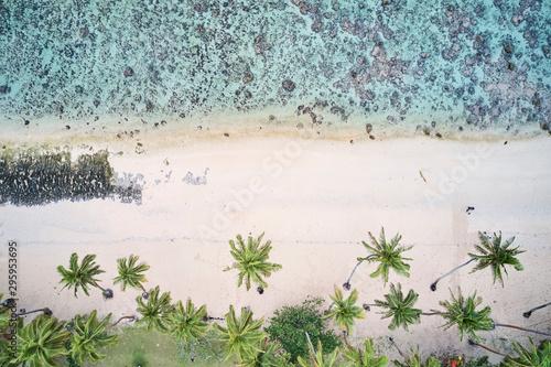antena-drzewka-palmowe-i-blekitne-wody-z-rafa-koralowa-na-koralowym-wybrzezu-fidzi