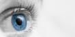 Blue Eyeball/ Vision Concept