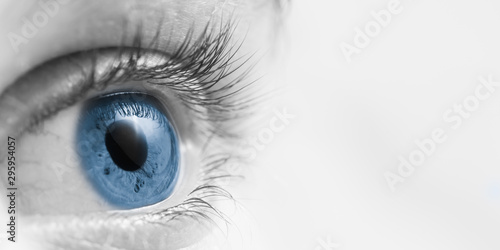Cuadros en Lienzo  Blue Eyeball/ Vision Concept