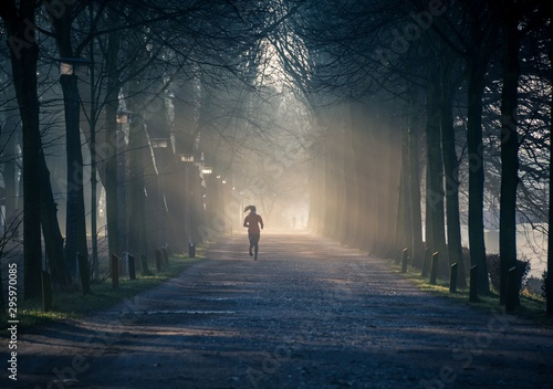 Photo sur Toile Route dans la forêt Horizontal shot of a path in a tree park with a woman in red tracksuit running on the path