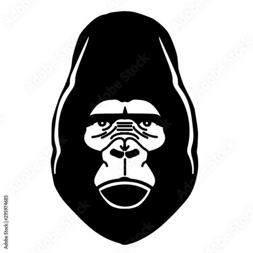 Photo gorila