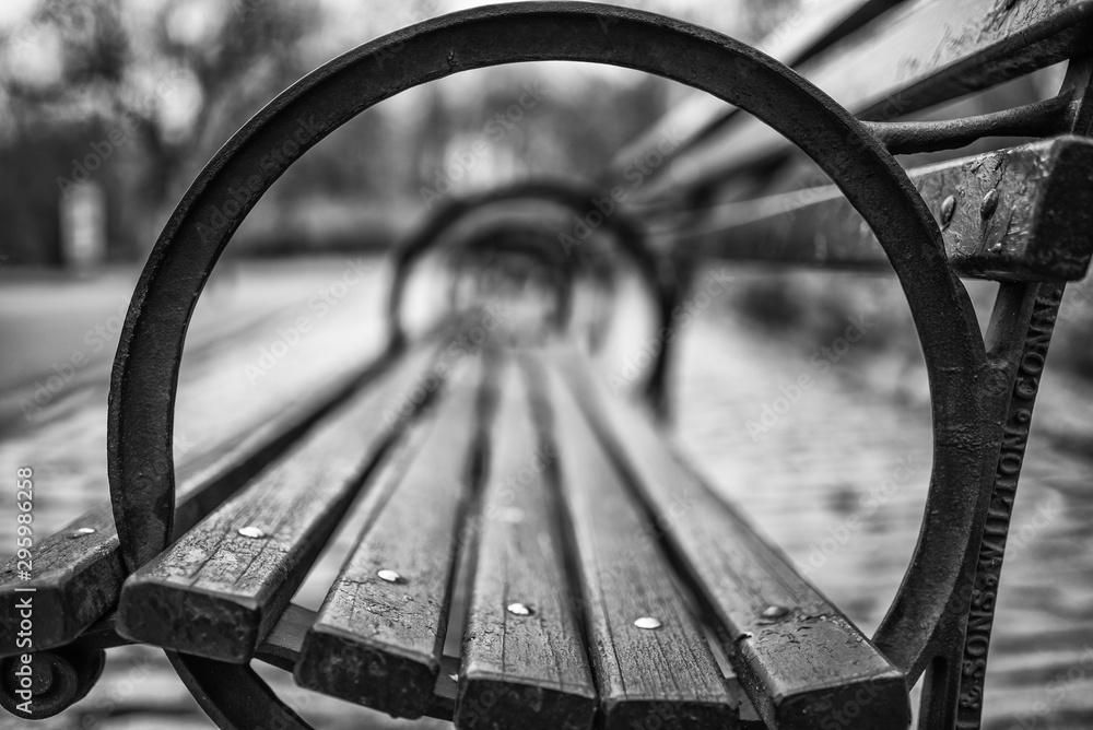 Fototapety, obrazy: Bench