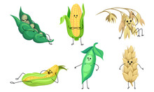 Set Of Humanized Ears Of Corn And Ears. Vector Illustration.