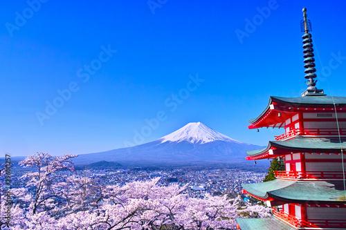 Fotografie, Obraz 春の桜咲く新倉山浅間公園内の五重塔と富士山