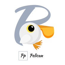 English Animal Alphabet Letter P In Vector Style