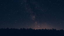 Milky Way In The Forest Landsc...