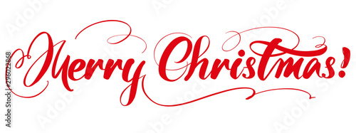 Fototapeta Merry Christmas Calligraphy lettering text symbol of Christianity hand drawn vector illustration sketch obraz