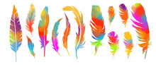 A Set Of Rainbow Of Feathers. ...