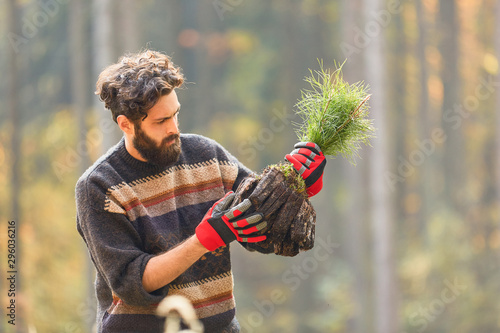 Leinwand Poster  Forstwirt in einer Baumschule mit Kiefer Setzling