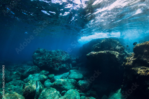 Fototapety, obrazy: Tranquil underwater scene with copy space. Tropical transparent sea