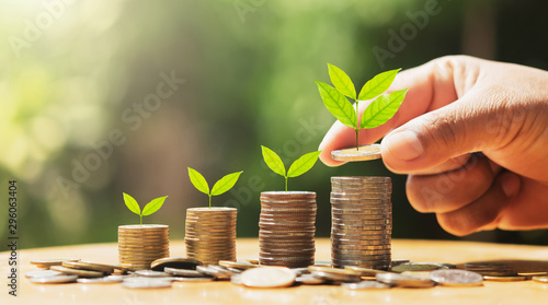 Fotografie, Obraz  hand putting coins on stack with plant growing on money