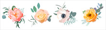 Floral Set Vector. Roses, Peon...