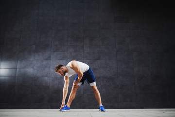 Sporty dedicated caucasian in shorts and t-shirt doing stretching exercises while standing outdoors in front of gray wall.
