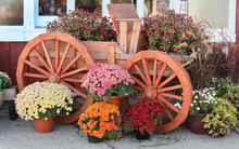 Wooden Wagon With Colorful Aut...