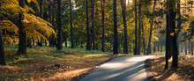 Colorful Autumn Morning In A City Park. Panoramic View With Trees, Yellow-orange Foliage, Park Asphalt Path And Side Sunlight And Highlights