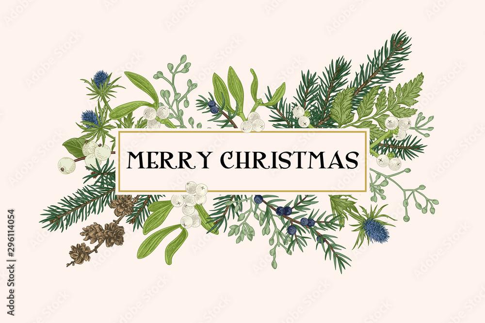 Fototapety, obrazy: Christmas frame with winter plants.