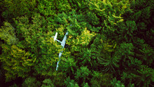 Crash Landed Glider Plane In The Woods