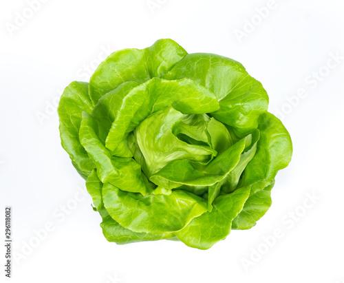 butterhead lettuce vegetable on white background